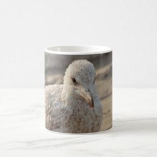 young gull on the beach coffee mug
