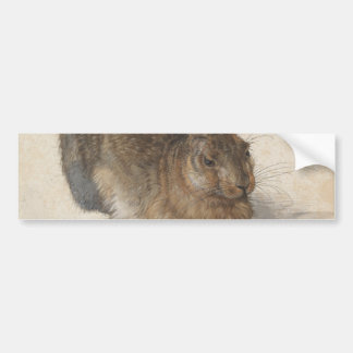 Young Hare by Albrecht Durer Bumper Sticker