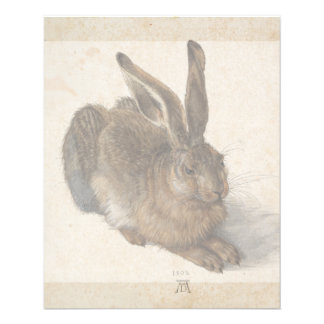 Young Hare by Albrecht Durer Flyer