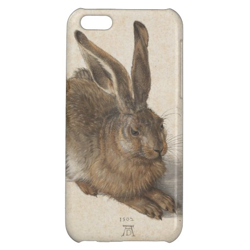 Young Hare by Albrecht Durer Cover For iPhone 5C