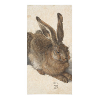 Young Hare by Albrecht Durer Photo Cards