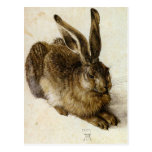 'Young Hare' by Albrecht Dürer Post Cards