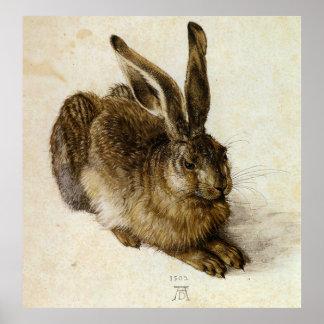 'Young Hare' by Albrecht Dürer Poster
