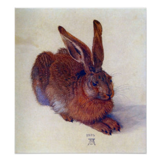 Young Hare by Albrecht Durer, Renaissance Fine Art Poster