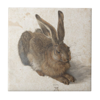 Young Hare by Albrecht Durer Ceramic Tiles