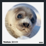 """Young Harp Seal Wall Sticker<br><div class=""""desc"""">Young harp seal</div>"""
