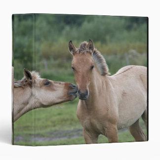 Young Henson horses encountering each other Vinyl Binders