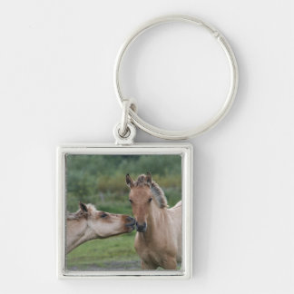 Young Henson horses encountering each other Keychain