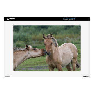 Young Henson horses encountering each other Laptop Skin