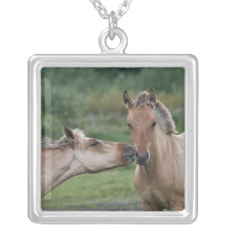 Young Henson horses encountering each other Jewelry
