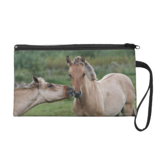 Young Henson horses encountering each other Wristlet
