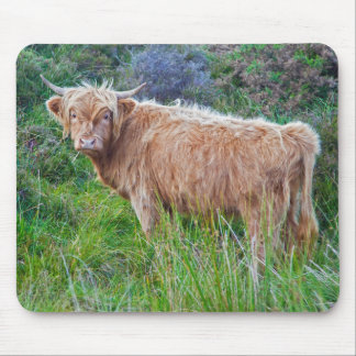 Young Highland Cow Mousemat Mouse Pad