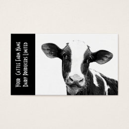 Cow business cards templates zazzle young holstein veal or dairy calf business card colourmoves