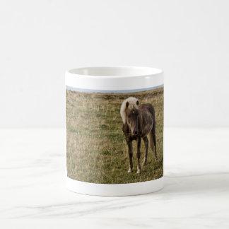 Young horse coffee mug