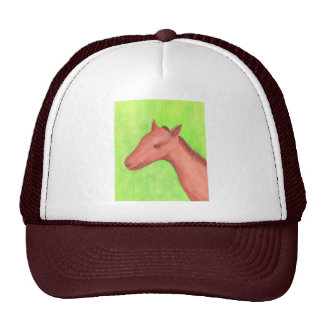 Young horse, colt, in watercolor Hat