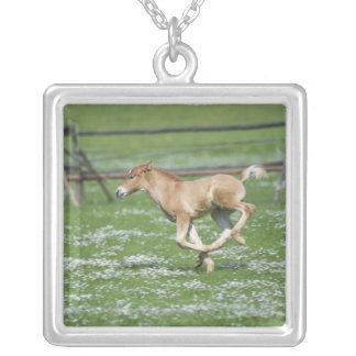 Young Horse Running Pendants