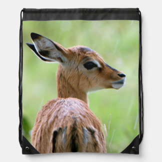Young Impala (Aepyceros Melampus) Foal Portrait Drawstring Backpack