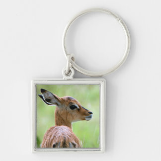 Young Impala (Aepyceros Melampus) Foal Portrait Silver-Colored Square Keychain