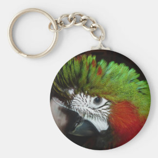 Young Jubilee macaw Keychains