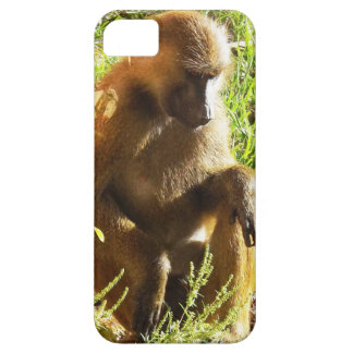 Young Juvenile Baboon Sitting and Looking Down iPhone SE/5/5s Case
