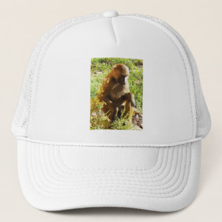 Young Juvenile Baboon Sitting and Looking Down Trucker Hat