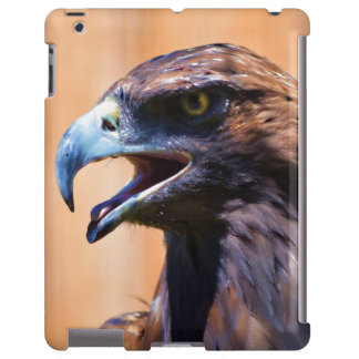 Young Juvenile Bald Eagle Wildlife Painting