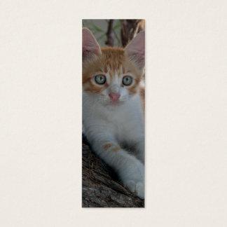 Young Kitten Bookmark Mini Business Card