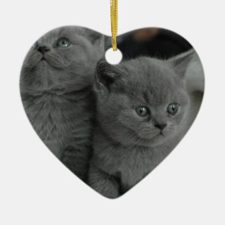 young kitten pet purr meow kitty cute cat ceramic ornament