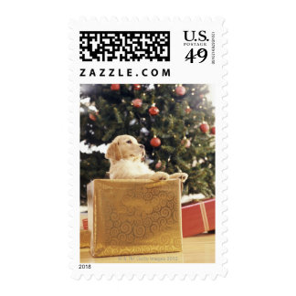 Young Labrador Leaning on a Christmas Present Stamp