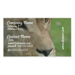 Young Lion Business Cards
