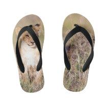 Young lion kid's flip flops