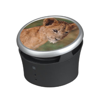 Young lion sitting speaker