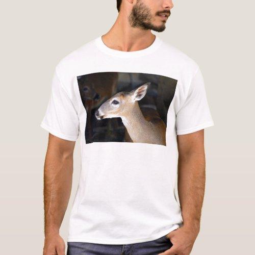 Young Male Key Deer, Florida T-Shirt