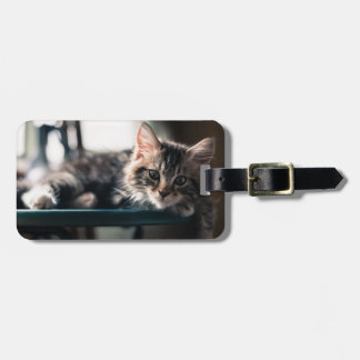 Young Male Tabby Cat 2 Bag Tag