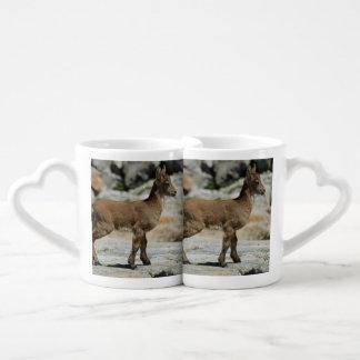 Young male wild goat, Iberian ibex, Spain Coffee Mug Set