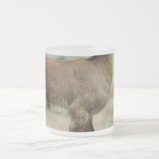 Young male wild goat, Iberian ibex, Spain Frosted Glass Coffee Mug