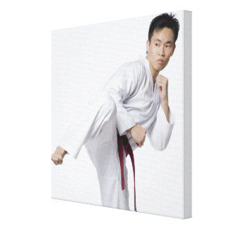 Young man practicing side kick stretched canvas print