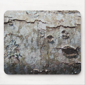 Young Maple Tree Bark 0041 Mouse Pad