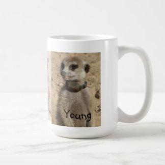 Young Meerkat Mug