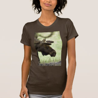 Young moose grazing in a field tshirt