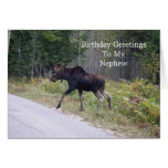 Young Moose On Road-Nephew's Birthday Card