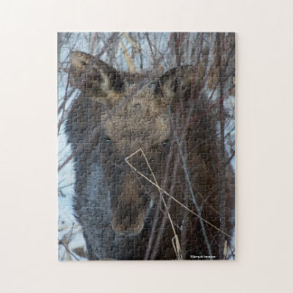 Young Moose Jigsaw Puzzles