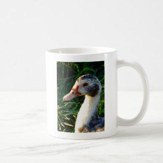 Young Muscovy Hen Duck Classic White Coffee Mug