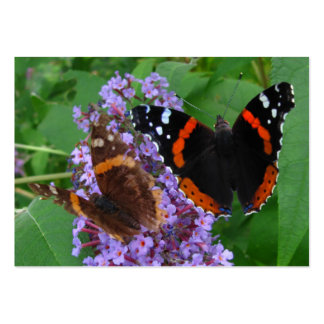 Young & Old butterfly ~ ATC Business Cards
