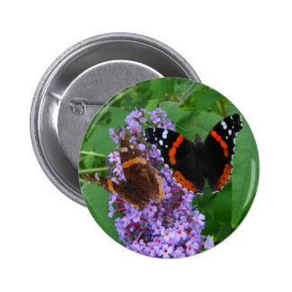 Young & Old butterfly ~ button