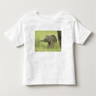 Young one of Indian / Asian Elephant,Corbett Toddler T-shirt