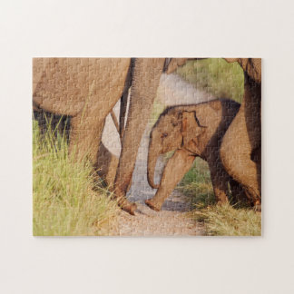 Young one of Indian Asian Elephant Puzzle