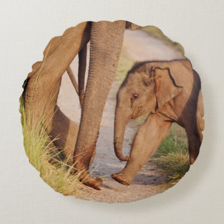 Young one of Indian Asian Elephant Round Pillow