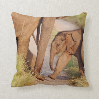 Young one of Indian Asian Elephant Throw Pillow