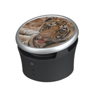 Young one of Royal Bengal Tiger Bluetooth Speaker